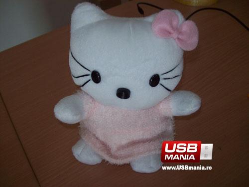 webcam pisicuta