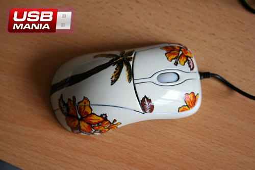 mouse Hawaii