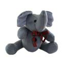 Camera Web Elefantel