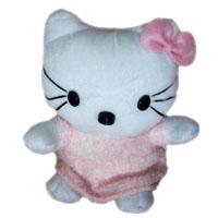 Camera Web Hello Kitty