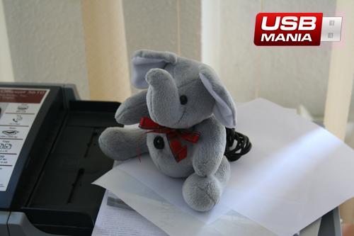 camera web elefant