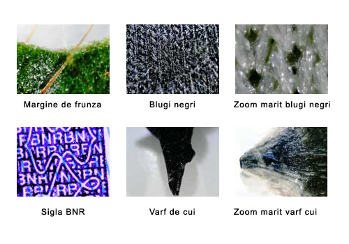 exemple zoom microscop